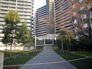 広さ2,800㎡超のコントラストガーデン。ゆとりある敷地だからこそ実現可能な公開空地です。